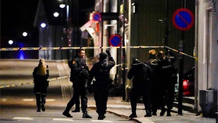 La 10 ani de la crimele lui Breivik, în Norvegia un bărbat înarmat cu un arc cu săgeţi a ucis și rănit zeci de persoane